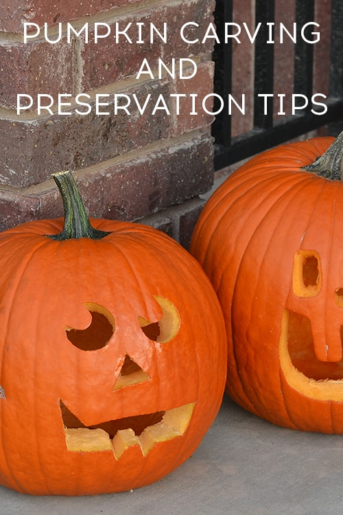 Pumpkin Carving and Preservation Tips