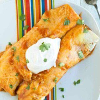 Easy Chicken Enchiladas
