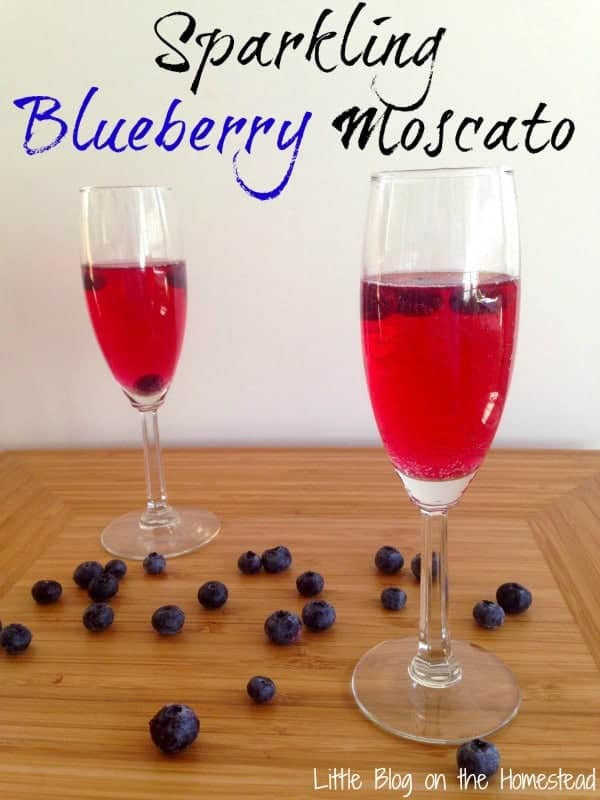 Sparkling Blueberry Moscato {Guest Post}