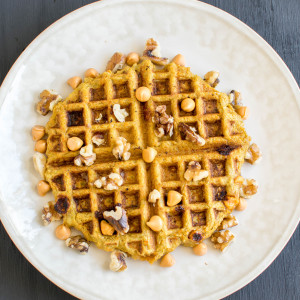 carrot-waffle-1.0